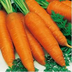 "Морковь поздняя ""Осенний король"""