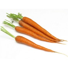 Морковь ранняя б/сердцевины